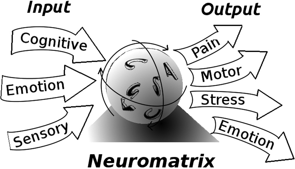 Neuromatrix Simplified